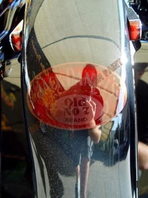 Theme Bikes - Rock and Roll Custom Paint