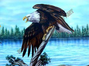 Americana Custom Paint 216