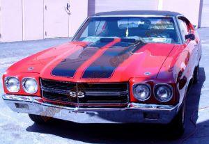 Auto Custom Paint 1065
