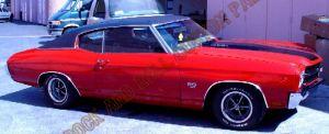 Auto Custom Paint 1067