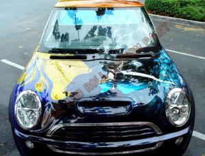 Auto Custom Paint 1160
