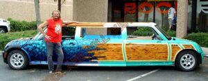 Auto Custom Paint 1165