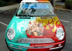 Auto Custom Paint 1170