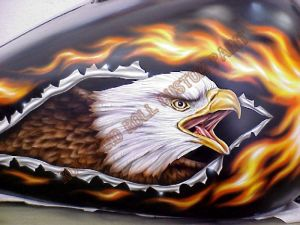 Eagle Custom Paint 436