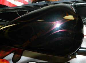 Flames Custom Paint 2269