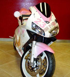 Sport Bikes Custom Paint 1649
