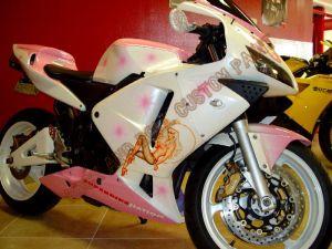 Sport Bikes Custom Paint 1653