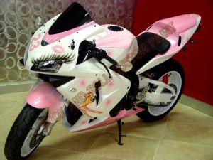 Sport Bikes Custom Paint 1656