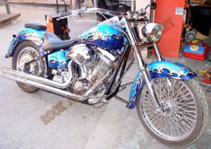Theme Bikes Custom Paint 1794