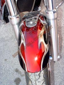 Theme Bikes Custom Paint 1831