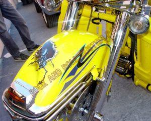 Theme Bikes Custom Paint 1863