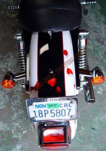 Theme Bikes Custom Paint 1971