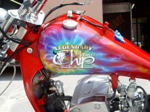Theme Bikes Custom Paint 1987