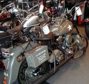 Theme Bikes Custom Paint 2000