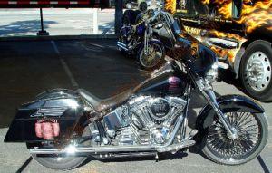 Theme Bikes Custom Paint 2002