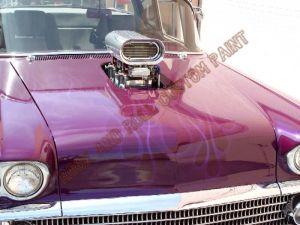 Auto Custom Paint 1186