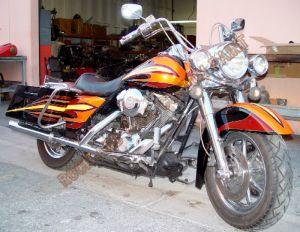 Theme Bikes Custom Paint 2020
