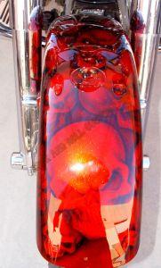 Theme Bikes Custom Paint 2024