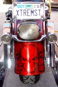 Theme Bikes Custom Paint 2030